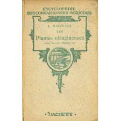 PLANTES OLÉAGINEUSES