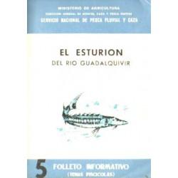 EL ESTURION DEL RIO GUALDALQUIVIR